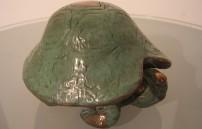 Kumpf Gottfried, Schildkröte